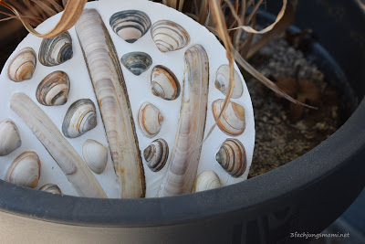 DIY Muschelplatte
